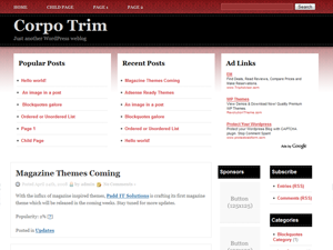 Wordpress тема оформления corpo-trim-10